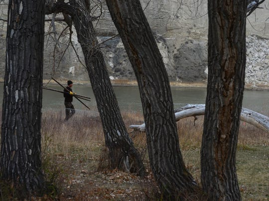 80 cottonwood shoots were planted by the Friends of the Missouri Breaks Monument organization and the BLM at the Eagle Creek campground in the Missouri River Breaks Monument on Tuesday morning.