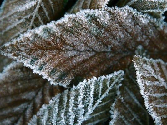 frosty22_4767625_ver1.0_640_480.jpg