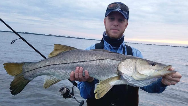 Zack Jordan, of Port St. Lucie, caught and released this snook, his personal best measuring 37 inches, while wade fishing Sunday in the Indian River Lagoon near Walton Road.