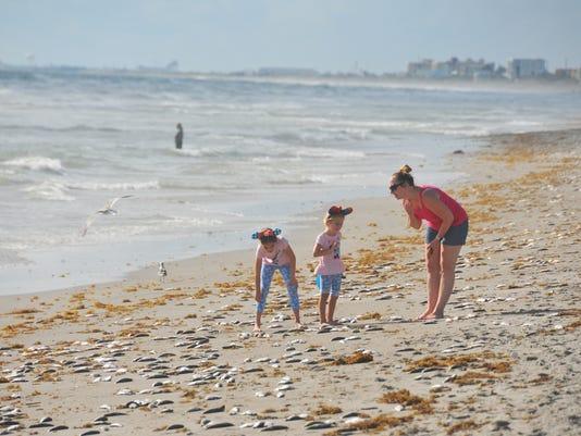 Red Tide Fish Kill Befouls Cocoa Beach Near Lori Wilson Park