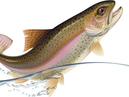 635964069635254978-trout.jpg