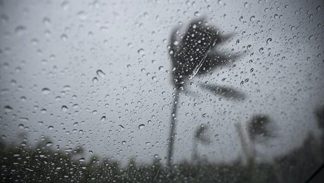 A palm tree is bent by strong winds as rain falls on a car window at Oceanfront Park Beach in Boynton Beach.