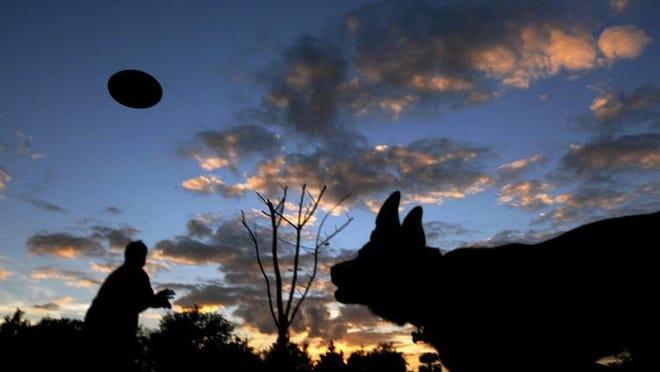 Wellington's dog park reopens Monday.