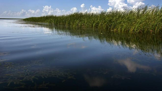 Florida lawmakers passed a plan to build a reservoir south of Lake Okeechobee to filter its fertilizer-tainted water before release into the Everglades.