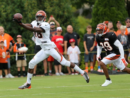 bengalscamp 1