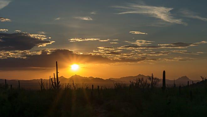 Saguaro National Park - Tucson Arizona
