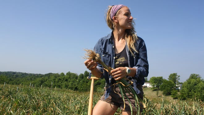 Greensleeves Farm assistant Alexa Abner, of Fort Thomas, talks to another farmhand as she peels back outer layers from a garlic plant after digging it out of a field.