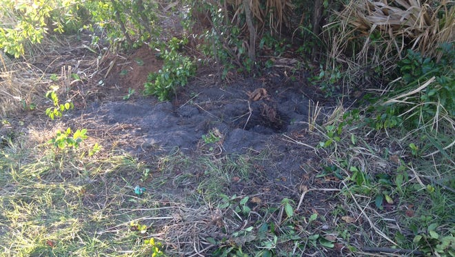 Titusville Police searched a vacant lot on Wednesday afternoon.