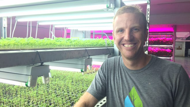 Brian Ernst, owner of Ernessi Organics in Ripon, grows microgreens and veggies in his basement urban farm.