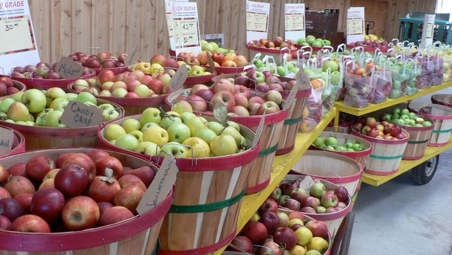 Fifty varieties of apples to try and buy.