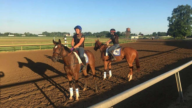 Amberspatriot (foreground) and Waki Patriot training at Ellis Park before the meet began.