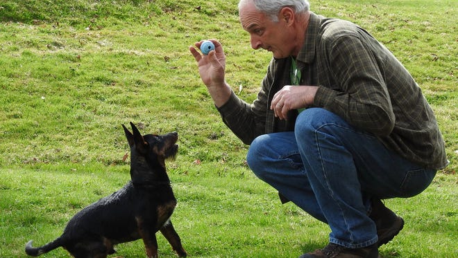 Forrest VanCott enjoyed spending time playing with his dog.