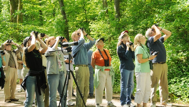 Hundreds of birders are expected to participate in the 12th annual Delaware Bird-A-Thon in early May.
