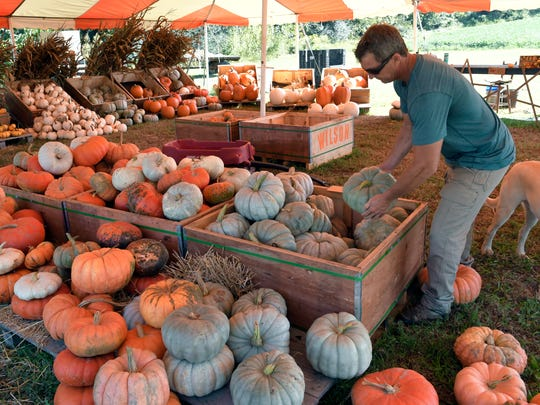 Ace Wilson organizes pumpkins in the farm store on