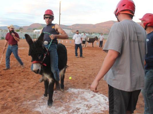 Donkey Baseball 1