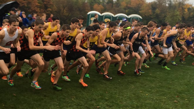 Runners break from the start line in the final KLAA Lakes Conference cross country meet on Oct. 20 at Island Lake State Recreation Area. It's unknown how the KLAA will format its divisions for sports like cross country.