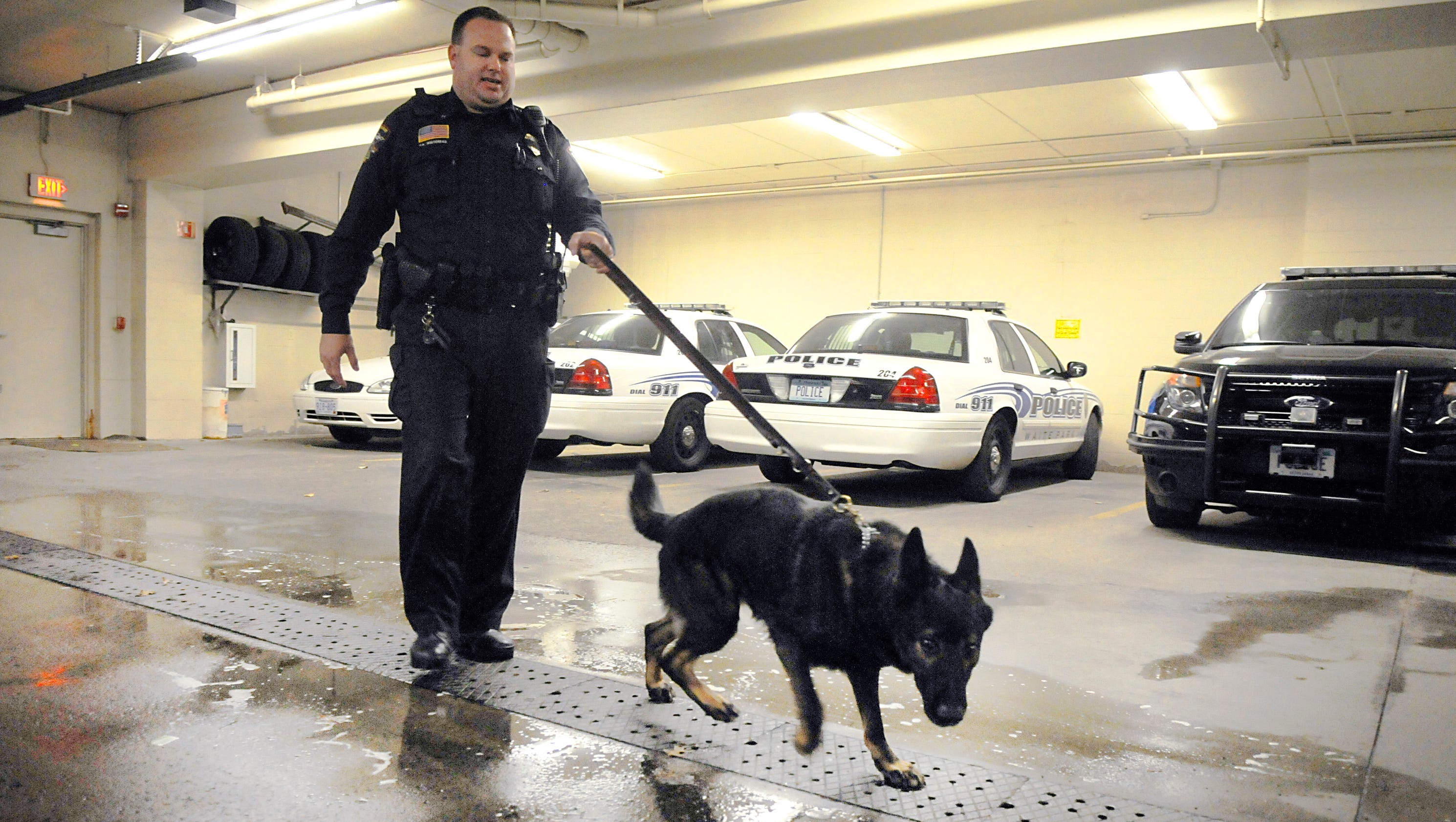 what u0027s it like to be a k 9 police officer