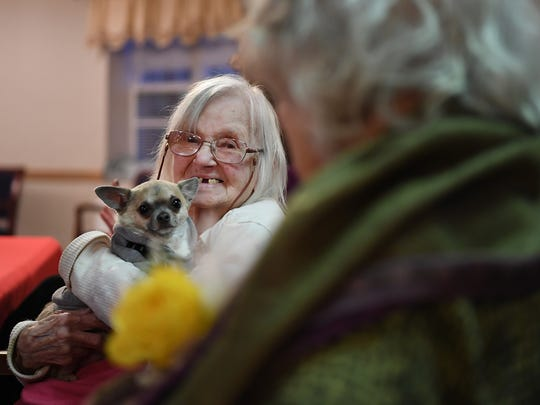 Woodcrest Health Care Center celebrated the birthdays of residents who are 100 years old, or older, on Friday. Martha Harrison, 104, holds Henry the service dog.