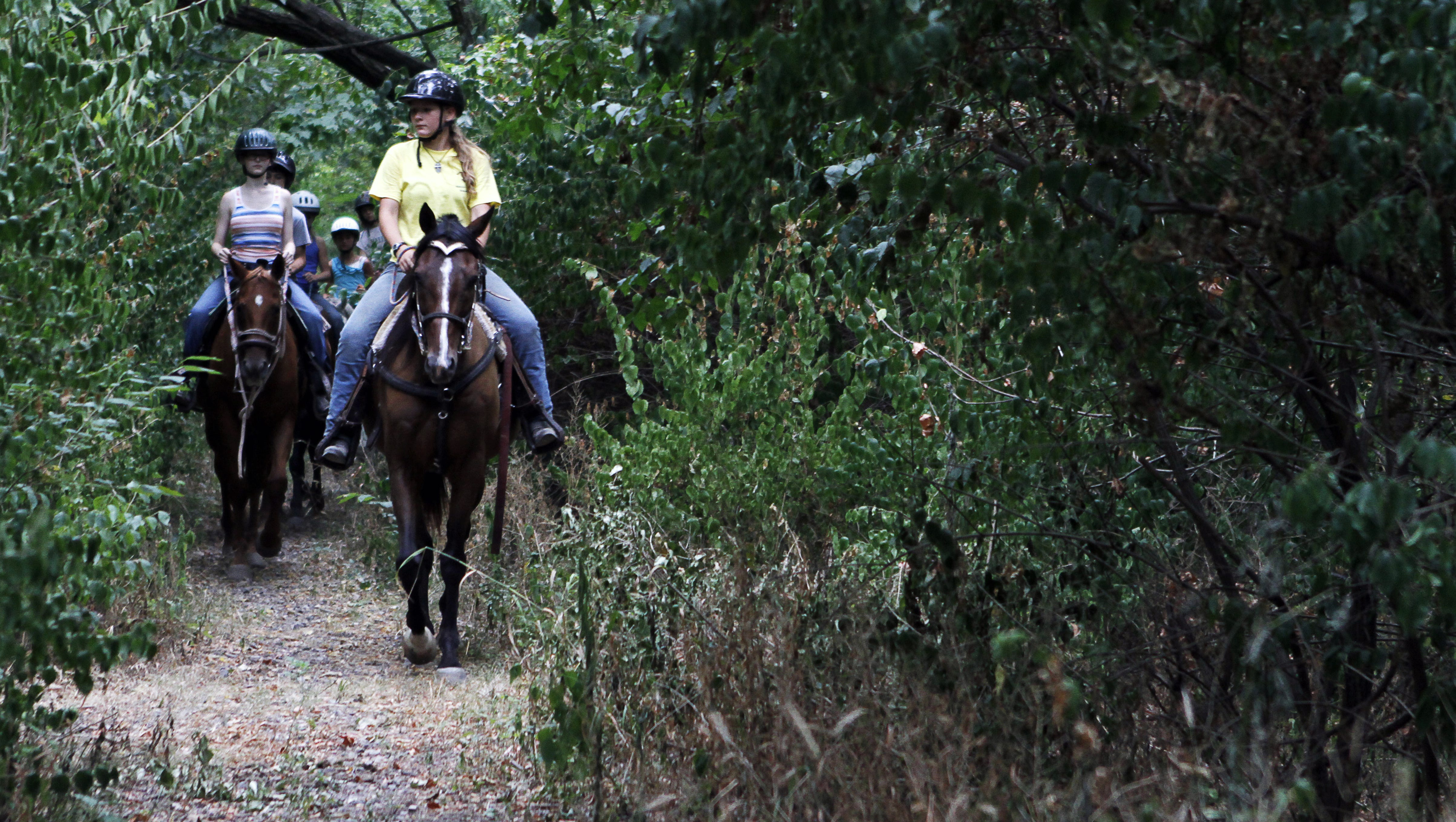 11 Best Places To Go Horseback Riding In Indiana