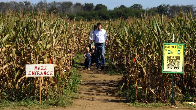 The 13th annual Beaches to Woodlands Tour will feature more than 40 events throughout Santa Rosa County this fall. This file photo shows visitors walking the corn maze at Sweet Season Farms, part of the tour for the past eight years.