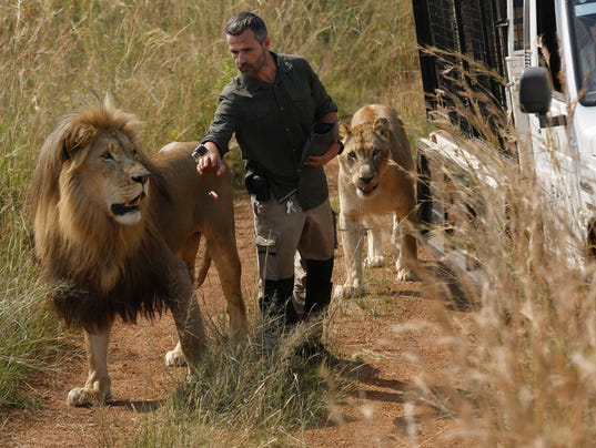 AP SOUTH AFRICA LION KILLS WOMAN I FILE ZAF