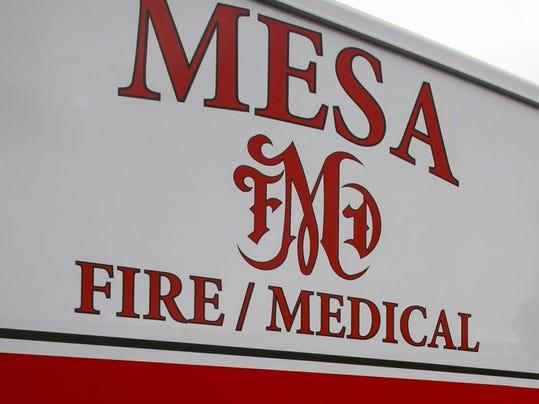 mesa-fire-logo.jpg