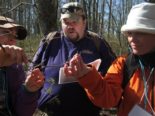 636548151944317445-Smokies-Phenology-Volunteers-Collect-Tree-Phenology-Data.jpg
