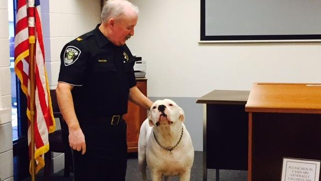 Otis was Plymouth police Chief Charlie Doan's favorite dog. He has since died and was known and loved by many people in the village. The 130-pound American bull dog was known in law enforcement circles. Doan is retiring Dec. 31, 2017 from law enforcement but will be serving the Plymouth Village Council starting in 2018 as a newly elected council member. Caption Override