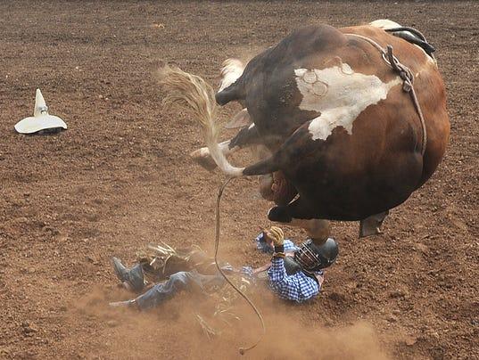 Fair Rodeo 4