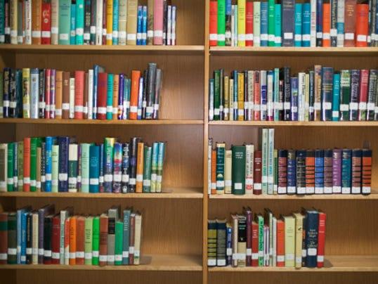 635859558435186853-libraryshelves.jpg