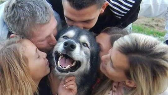 The Carpenter family surrounds No'Vie with kisses during their only visit with the dog since he was impounded earlier this year.
