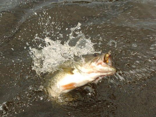 Fish on at barnett reservoir for Ross barnett fishing report