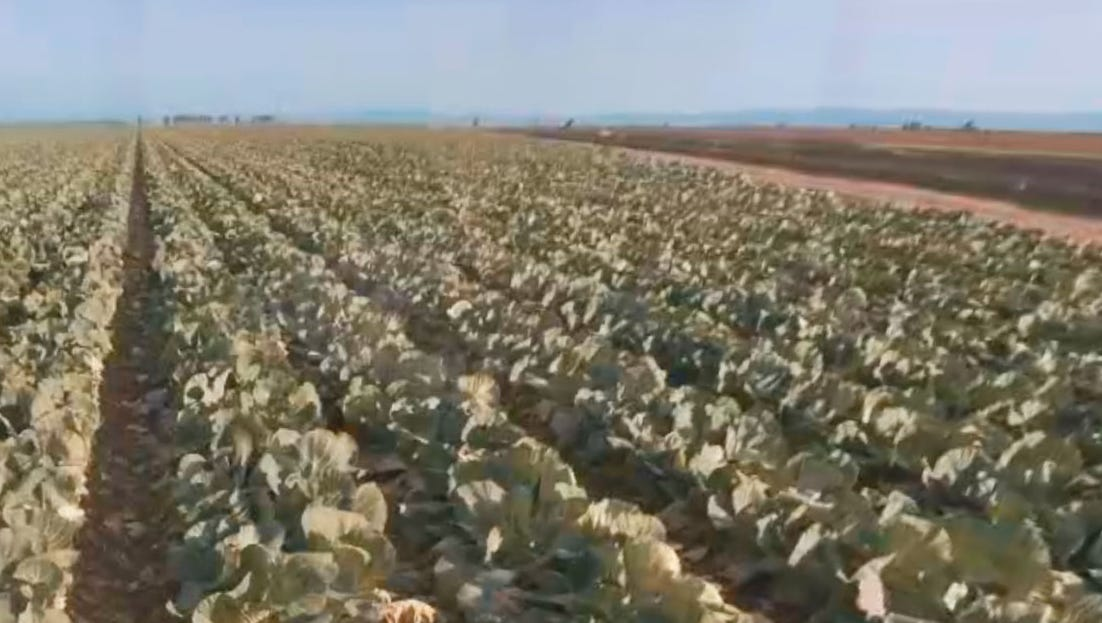 Salton Sea in 360: The connection between farm industry and the Salton Sea's fate