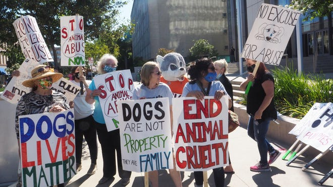 "Nearly two dozen dog lovers and supporters gathered Thursday morning in front the San Joaquin County Courthouse, where accused puppy mill operator Pedro Damien Maldonado Victorio was appearing. ""Every time is comes he to court we will be here,"" organizer Laurie Costa said."