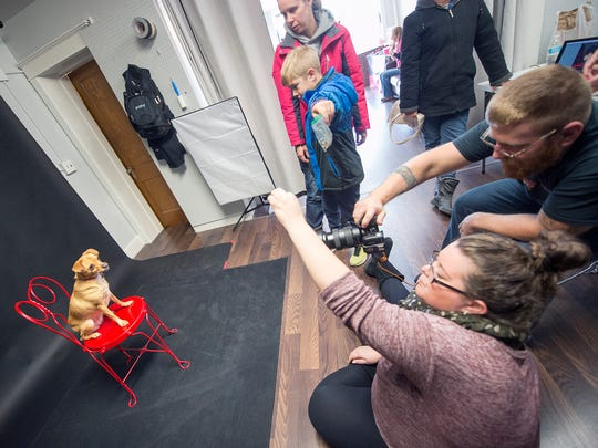 Charly, a 17-month-old dog rescued from a kill shelter in Alabama, receives direction from all sides during a portrait session recently at Orendorff Studios during a fundraiser for BARk. Charly is owned by the Wilkins family of Springettsbury Township.