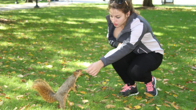 """Madeline Jackson, 19, a freshman at the University of Michigan and a member of """"The Squirrel Club"""" fed squirrels near the Harlan Hatcher Graduate Library in Ann Arbor on Oct. 11, 2015."""