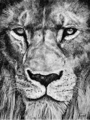 """""""Lion, Close"""""""