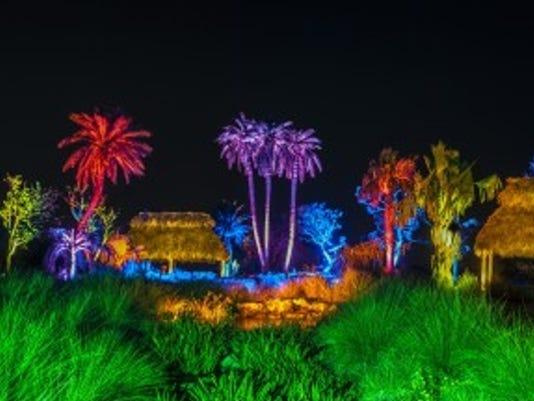 636486766298180090-Botanical-Garden-NightLights.jpg