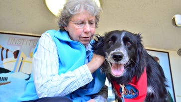 Archive: Holy Angels dog has a side job helping kids in Newtown