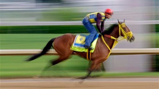 Exercise rider Juan Belmonte takes Kentucky Derby hopeful Wildcat Red for a morning workout at Churchill Downs Tuesday, April 29, 2014, in Louisville, Ky. (AP Photo/Morry Gash)