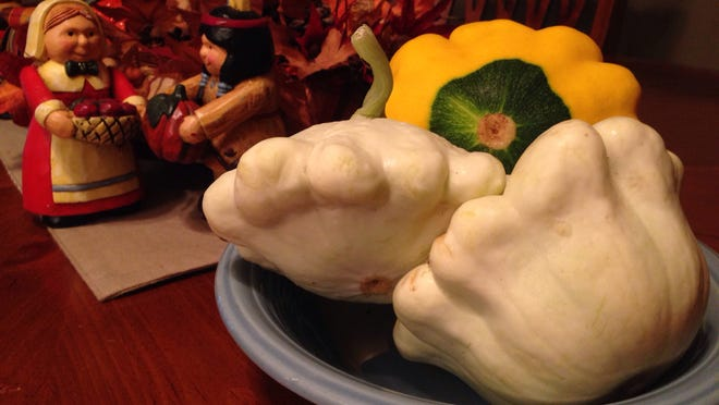 Varities of pattypan squash can be used in a variety of ways and are in season in Southwest Florida.