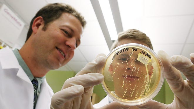 BYU student Jacob Hatch holds a colony of MRSA, a  bacteria that causes serious disease and death, along with Professor Bradford Berges at the Life Sciences lab in Provo, Utah, Wednesday, Sept. 9, 2015. Hatch's father contracted it and had to have one leg amputated.