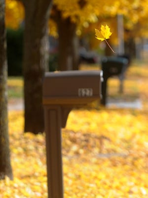 A leaf falls to the ground Wednesday afternoon in Fond du Lac.
