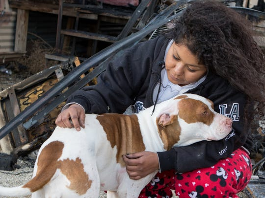 Perla De la Cruz comforts her 2-year-old pit bull Lili who was injured in the mobile home fire Tuesday on Comet Street on the East Mesa.