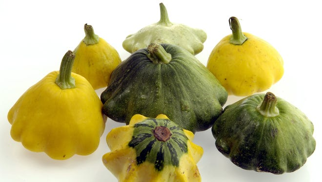 KRT FOOD STORY SLUGGED: FRESHFINDS-PATTYPAN KRT PHOTOGRAPH BY ALEX GARCIA/CHICAGO TRIBUNE (September 14) Fresh squash in different sizes and colors. (cdm) 2005