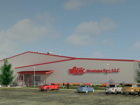 An artist's rendering of the new egg sorting facility to be built at 1014 38th Street North in Great Falls.