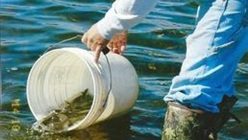 Experts to discuss walleye fishing in Wisconsin