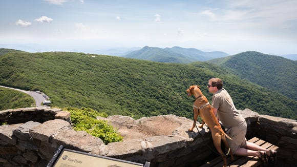 A hiker and his dog take in the view at the summit of the Craggy Pinnacle trail Friday, June 15, 2018.
