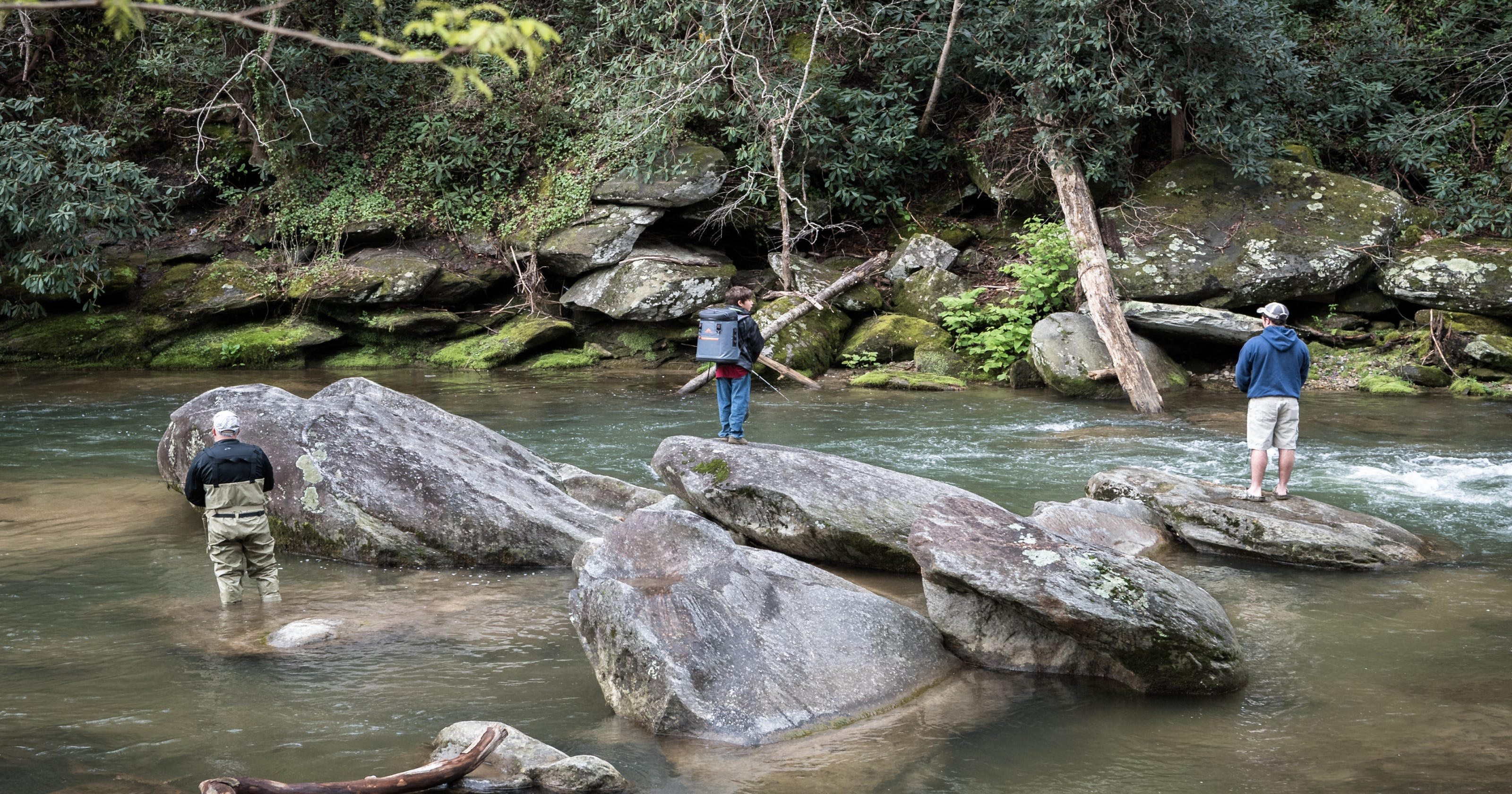 NC Wildlife Resources Commission Celebrates July 4 With Free Fishing Day