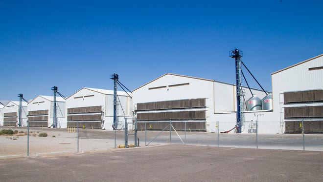These are chicken houses at Hickman's Family Farms in Tonopah Aug. 29, 2017. The company is changing some of its chicken pens to cage-free facilities, and additionally is making egg cartons from recycled materials.